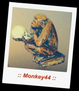 Monkey44 Says Blog